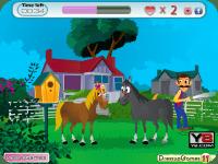 Лошадиные игры