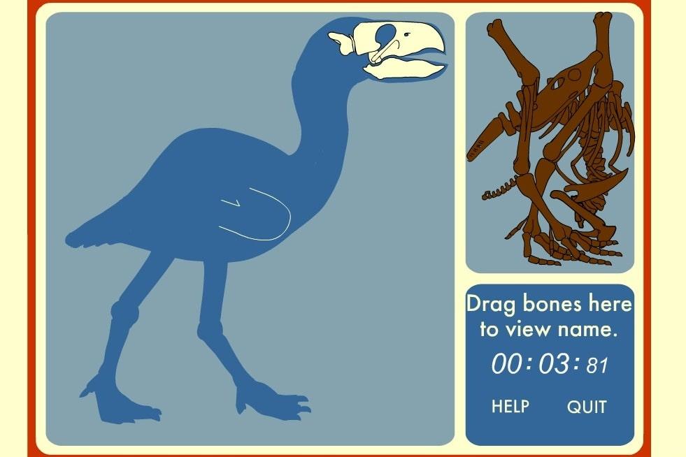 Собери скелет динозавра
