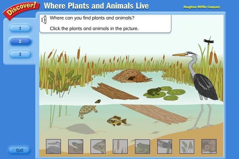 Животные прудов