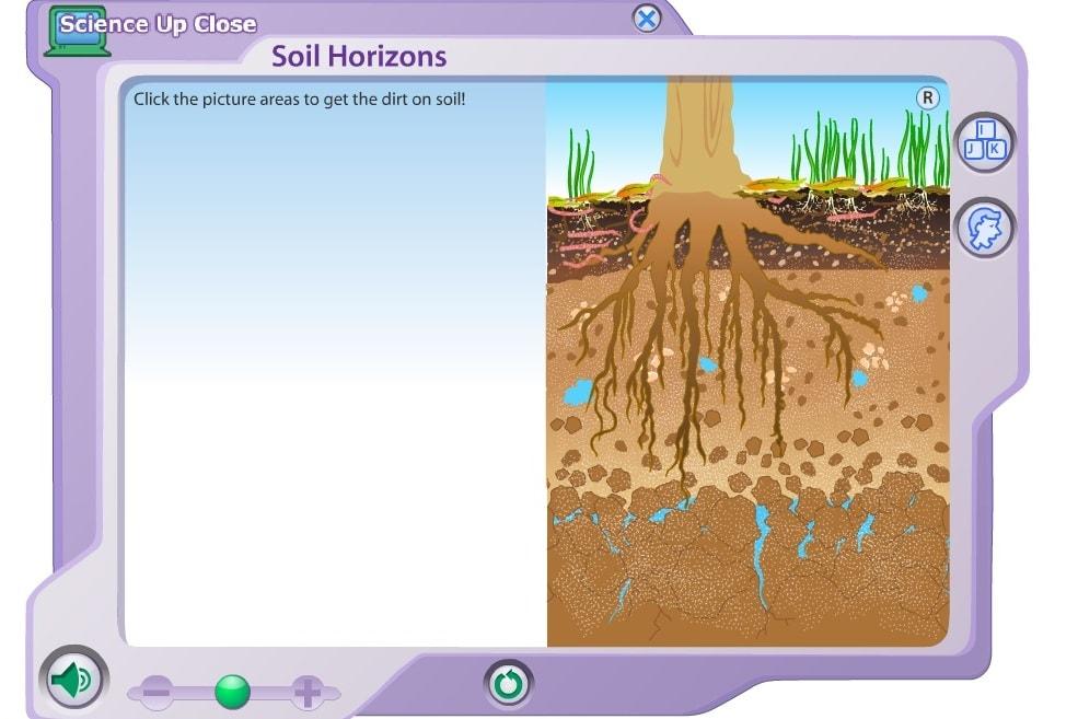 Почва для корней растений