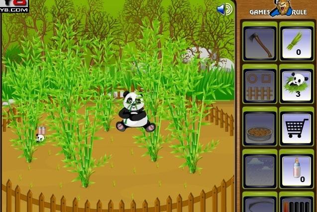 Ферма с пандами