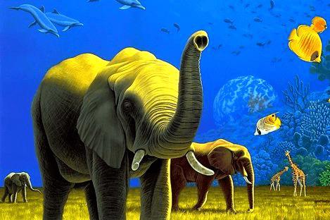Животные игры